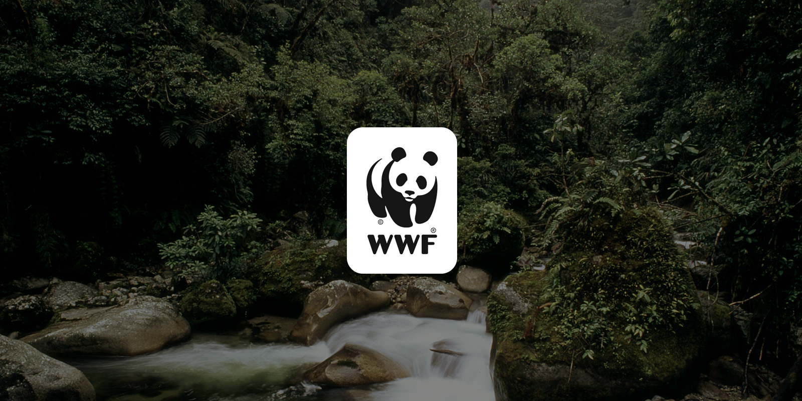 Terrestrial Ecoregions of the World | Publications | WWF
